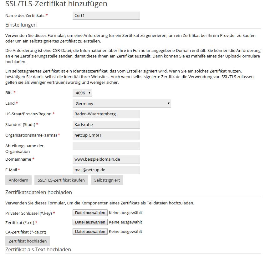 Plesk Onyx Panel Webhosting – netcup Wiki