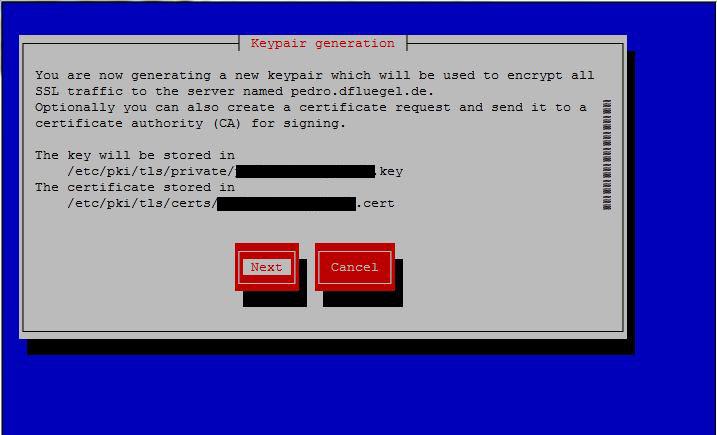 Erstellung von einem SSL-Zertifikat – netcup Wiki